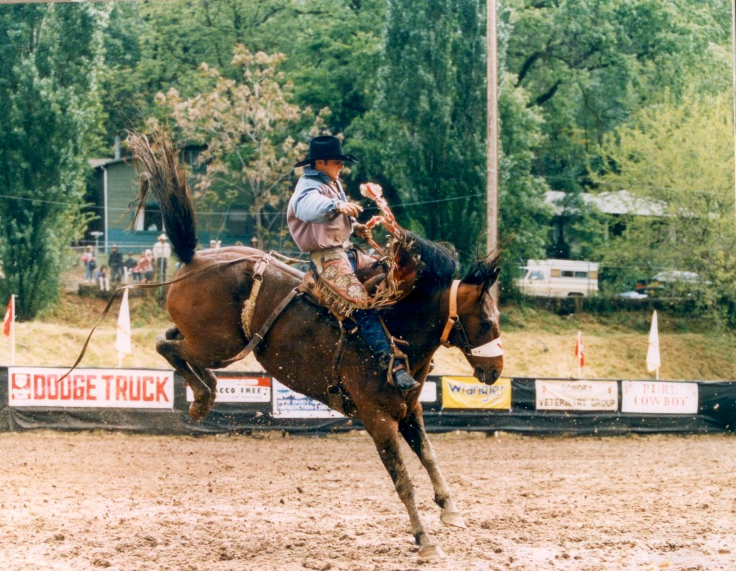 On NFR bronc, Rock n' Ronnie, owned by Western Rodeos in Sonora, California. (Photo courtesy of Steve Stevens)