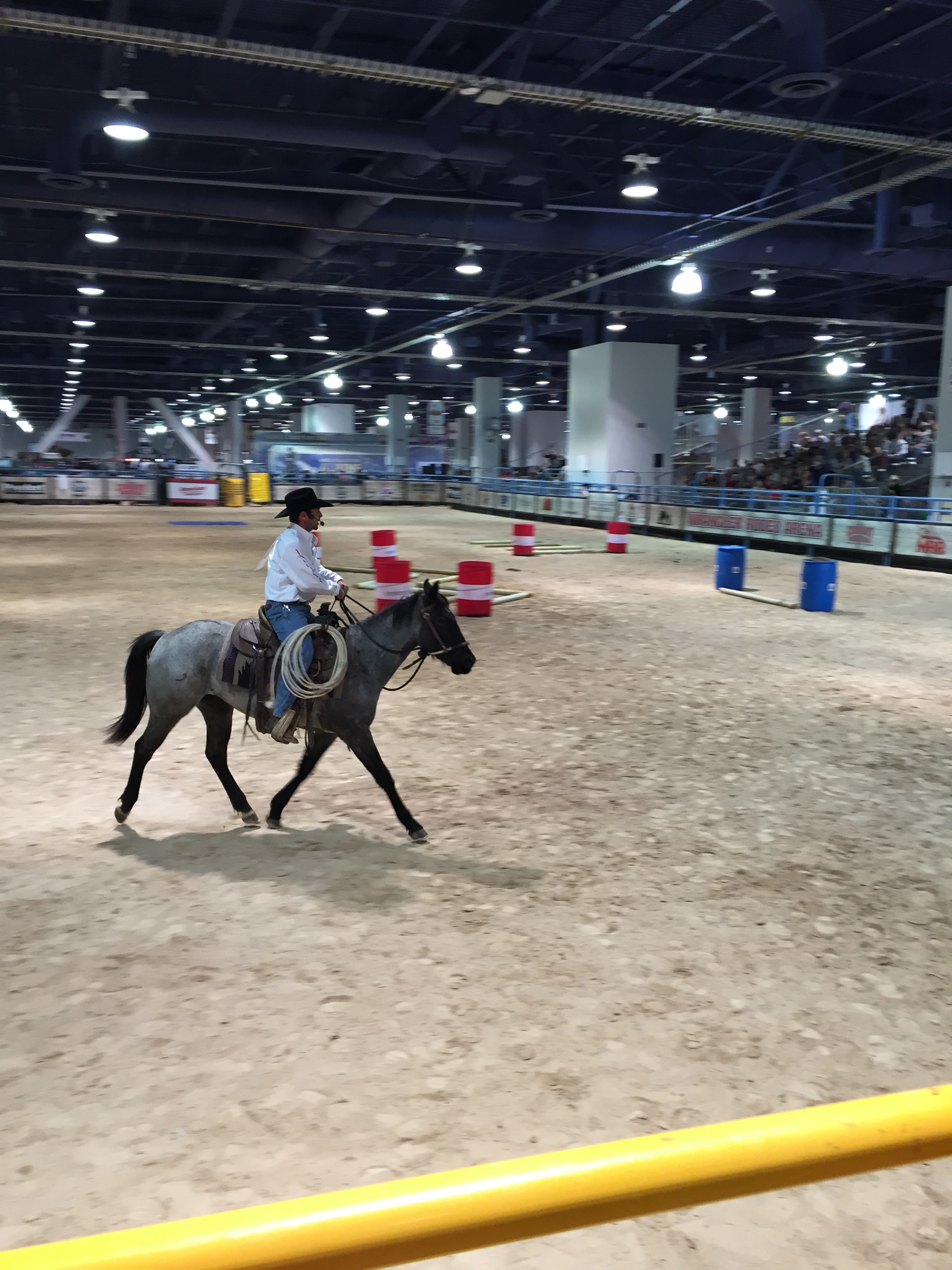 Steve riding Jenny during the final round. (Photo courtesy of Steve Stevens)