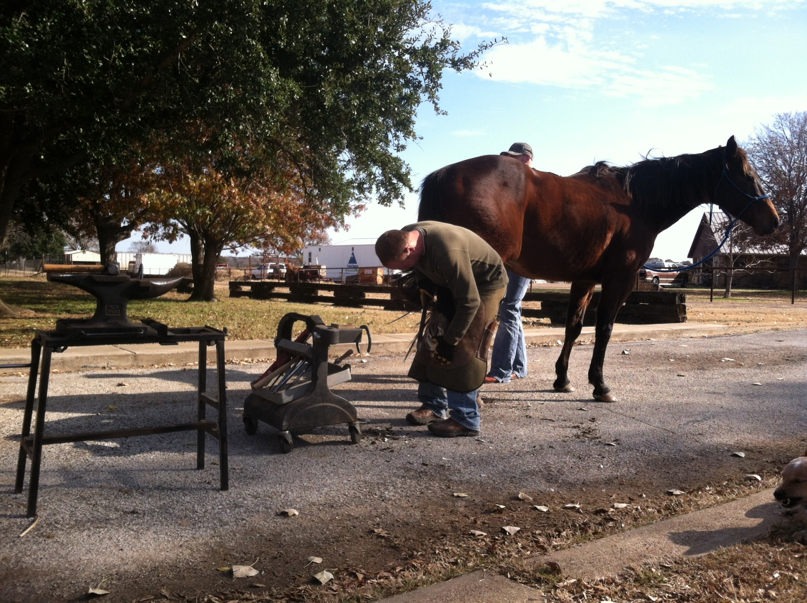 Farrier, Joe Yoder. (Photo courtesy of Steve Stevens)