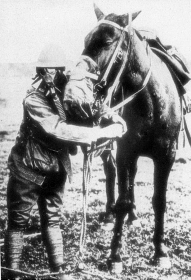 An American soldier demonstrating a gas mask for his horse during World War I. https://en.wikipedia.org/wiki/Horses_in_World_War_I#/media/File:Gasmask_for_man_and_horse.jpeg   (public domain)