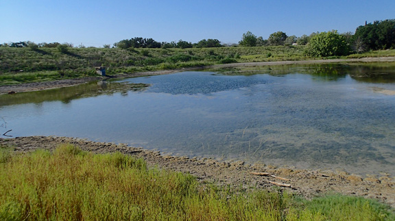 A site examined during the study within the Lampasas city limits was partially filled with sediment after brush control. (Texas A&M AgriLife Research photo by Matt Berg)