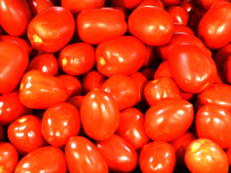 Tomatoes in a grocery store. (Texas A&M AgriLife photo by Kay Ledbetter)