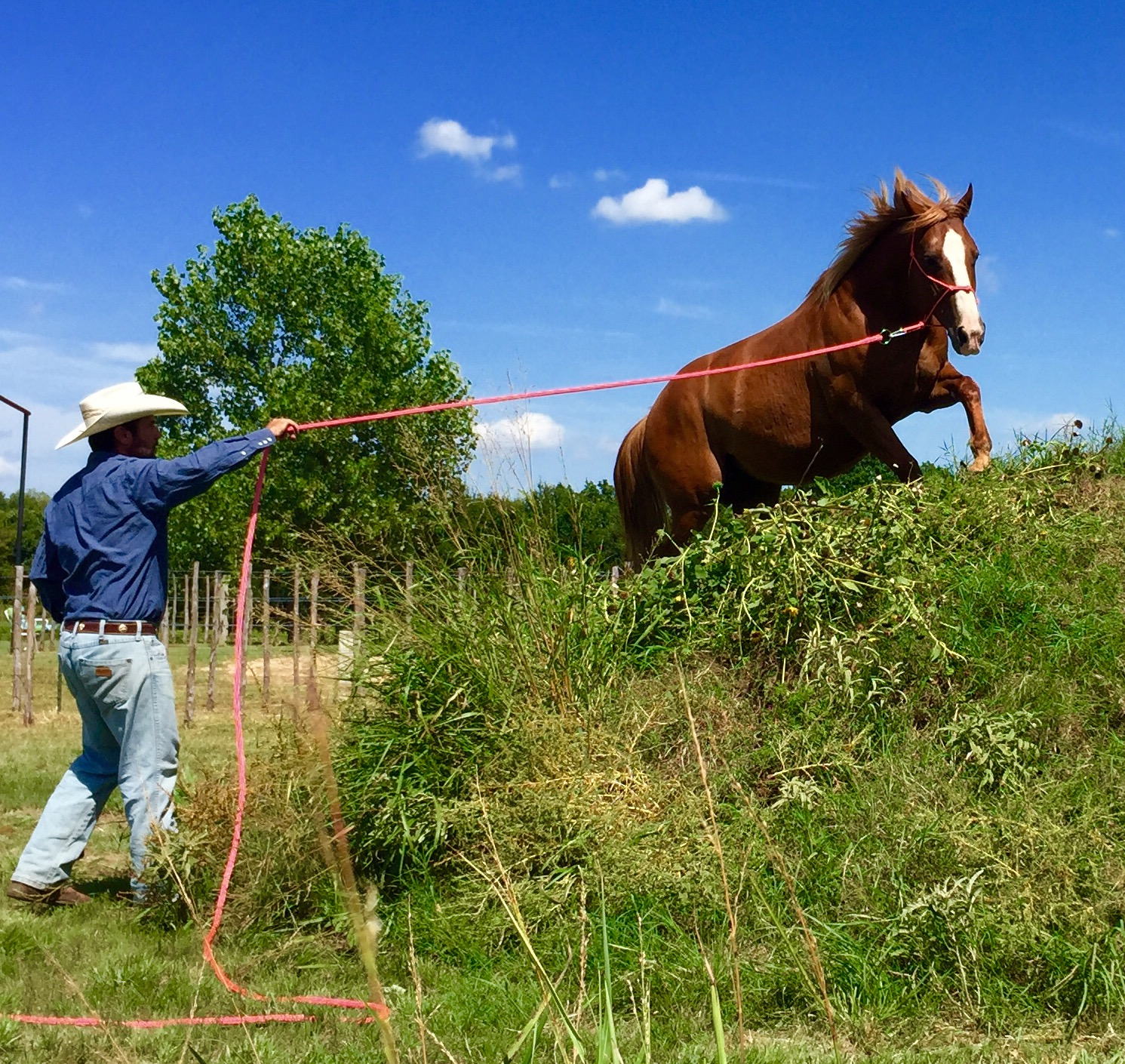Steve and -Keeley- who is currently in training, also from Thomas Second Chance Rescue Ranch. Although they are rescues, it is still important to give them a job to do. Whether it be on the ground. (Photo courtesy of Steve Stevens)